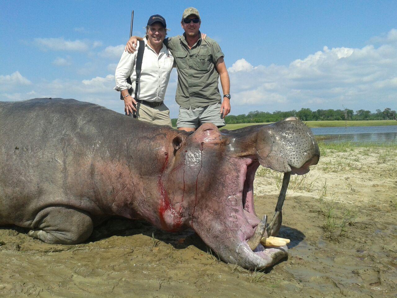 MORISETTE HIPPO.jpg
