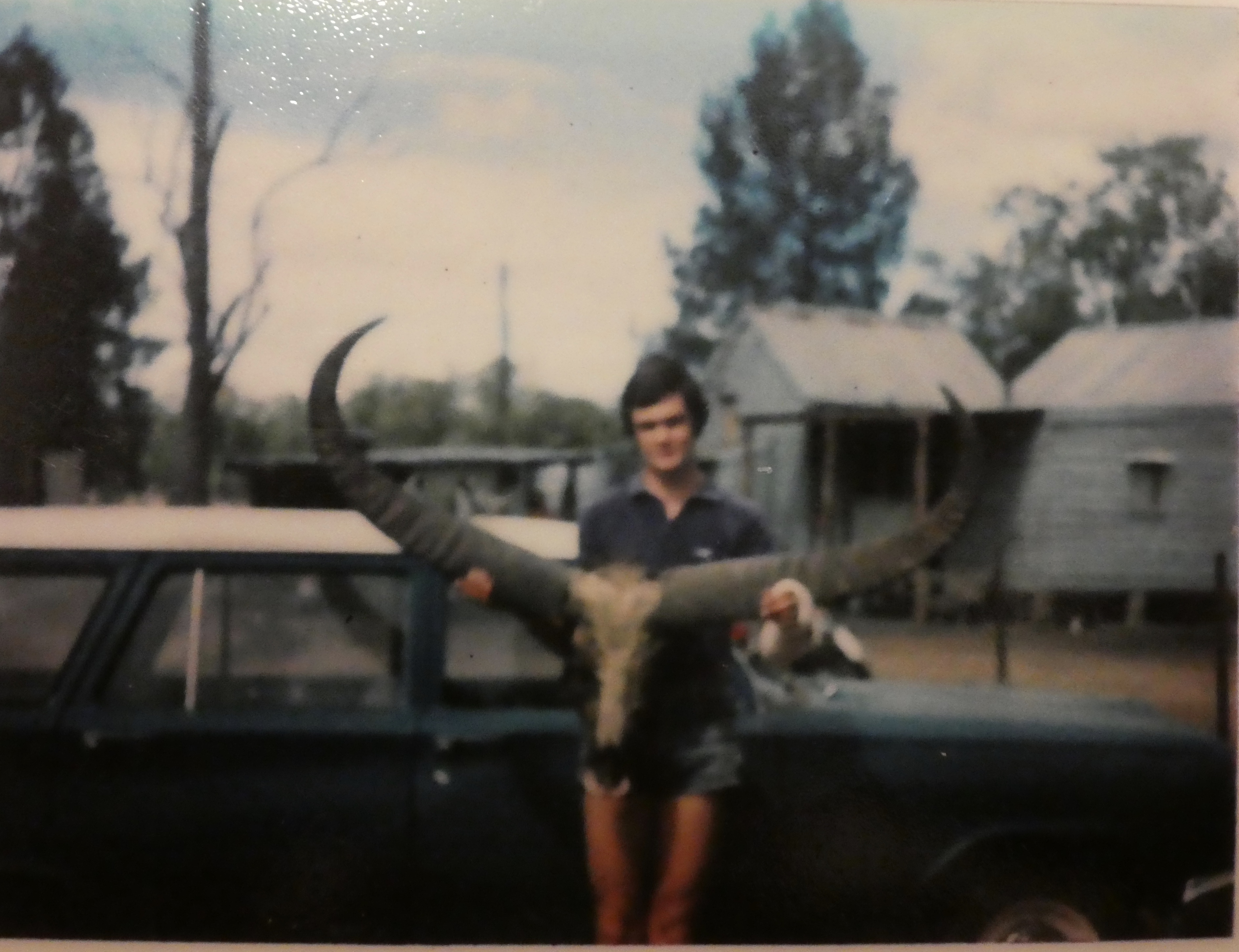 My Buffalo on the EH back in the day .jpg