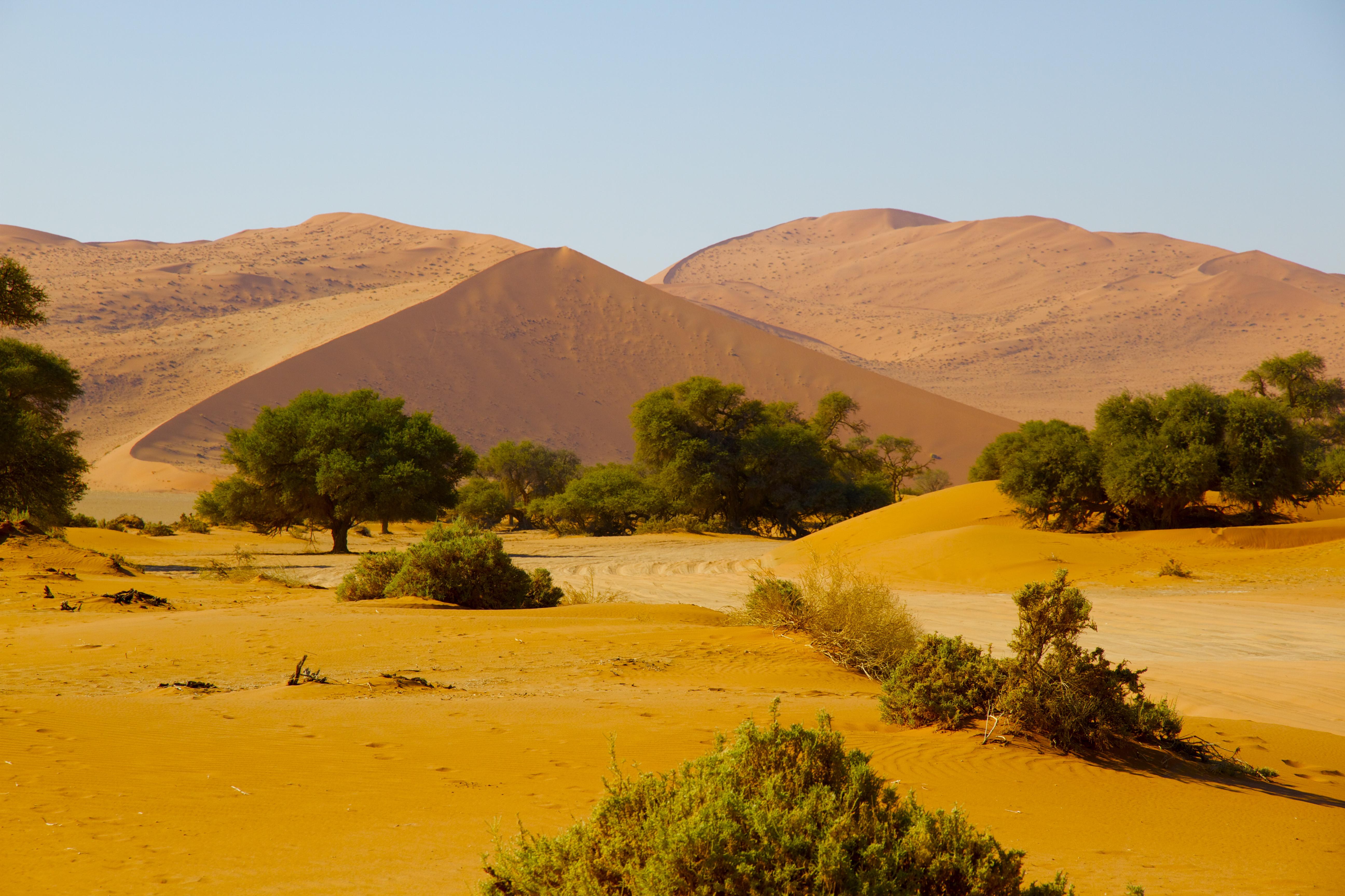 namibia 2 - 829.jpg
