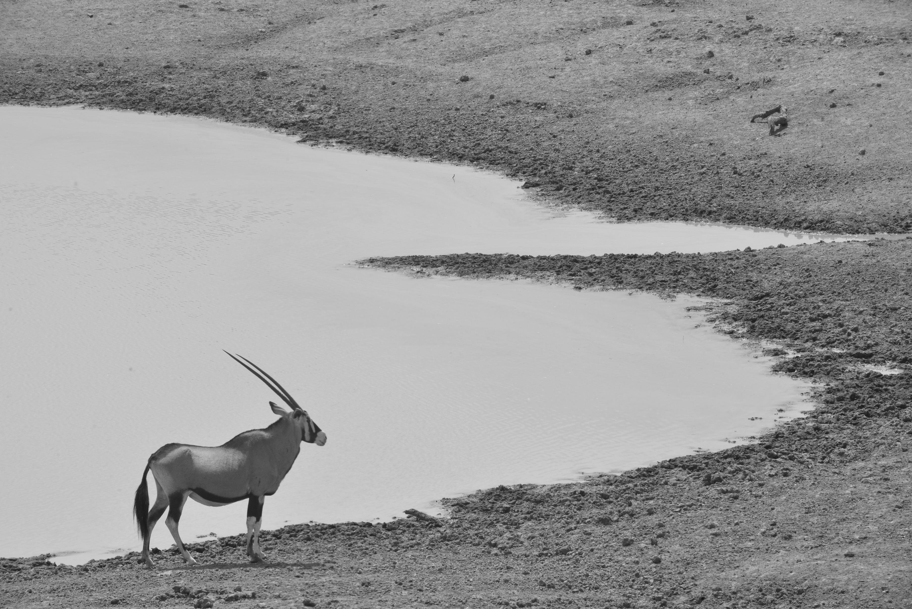Namibia 2015  (267).JPG