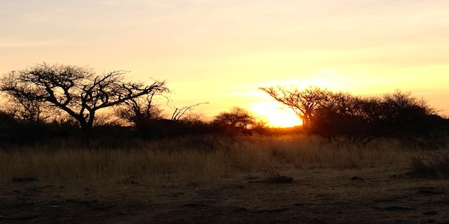 Namibia-bush-sunset.jpg