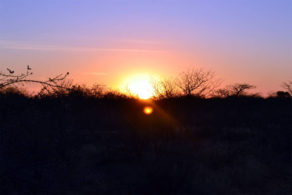 Namibia Hunting and Road Trip. 886.jpg