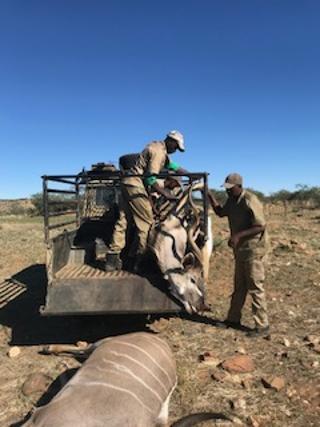namibia4.jpg