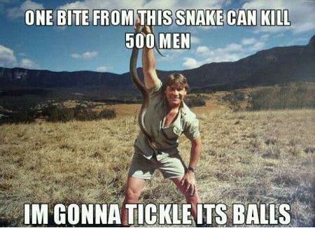 One-Bite-From-This-Snake-Can-KIll-500-Men-Funny-Snake-Meme.jpeg