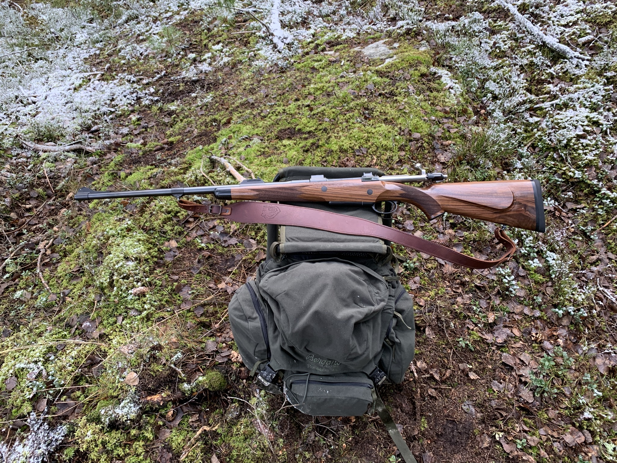 Open sights hunt.jpg