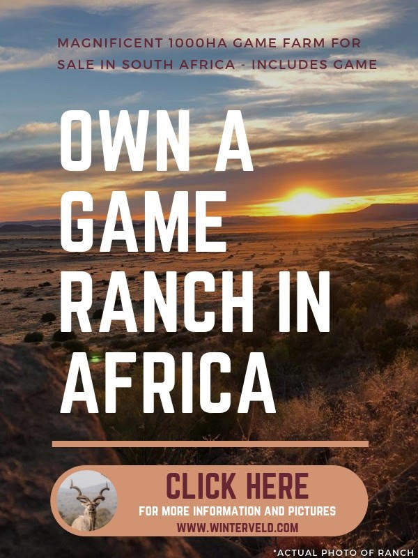 own-a-game-ranch-in-africa.jpg