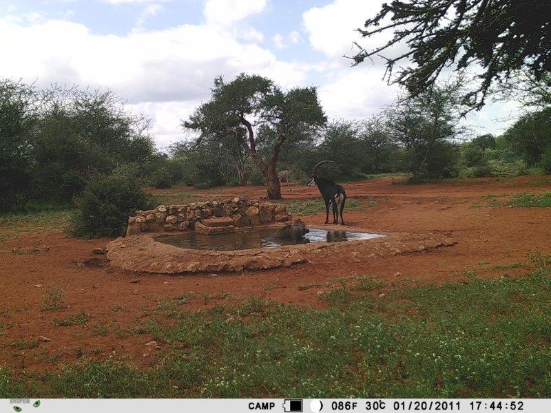 PICT0122.jpg