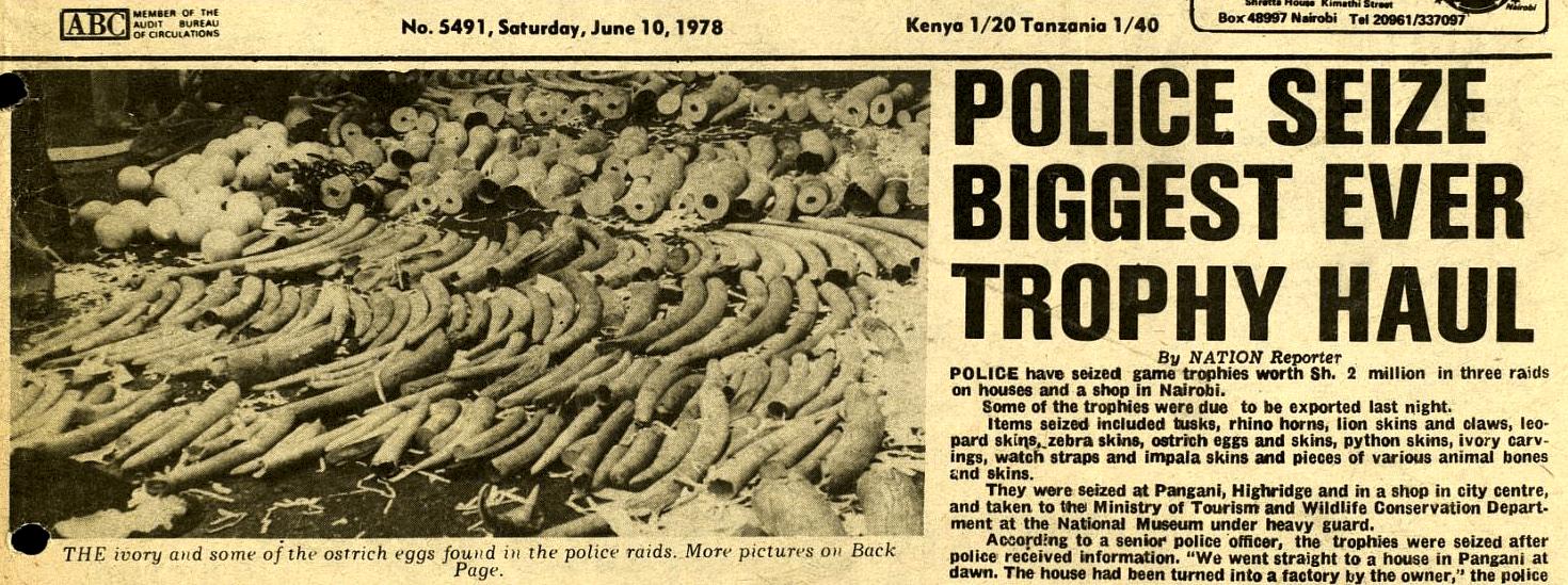 poaching-elephant.jpg