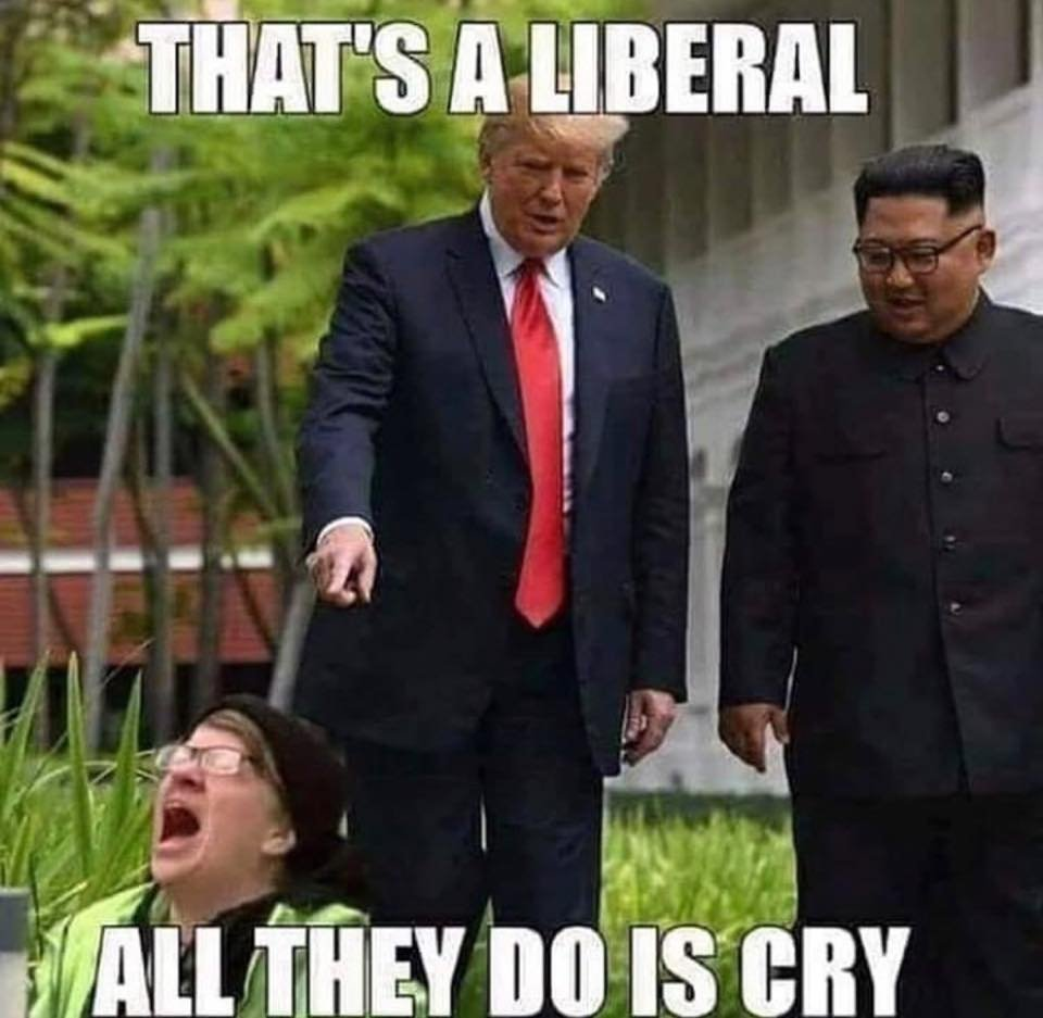 Pro-Trump-Memes3.jpeg
