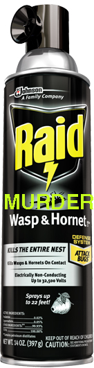 raid wasp and hornet killer 33.jpg