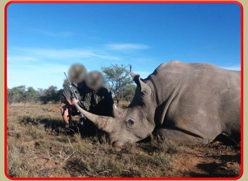 Rhino Green Hunt 4.JPG