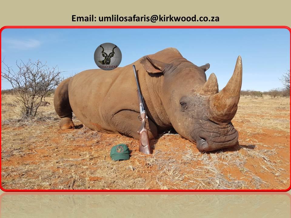 Rhino Hunt.jpg
