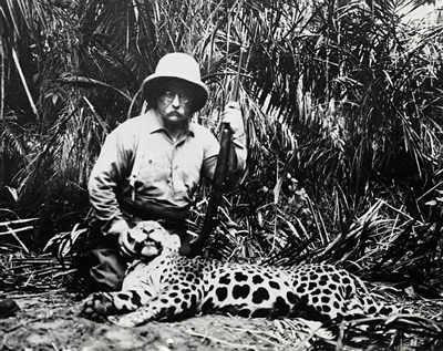 roosevelt jaguar.jpg