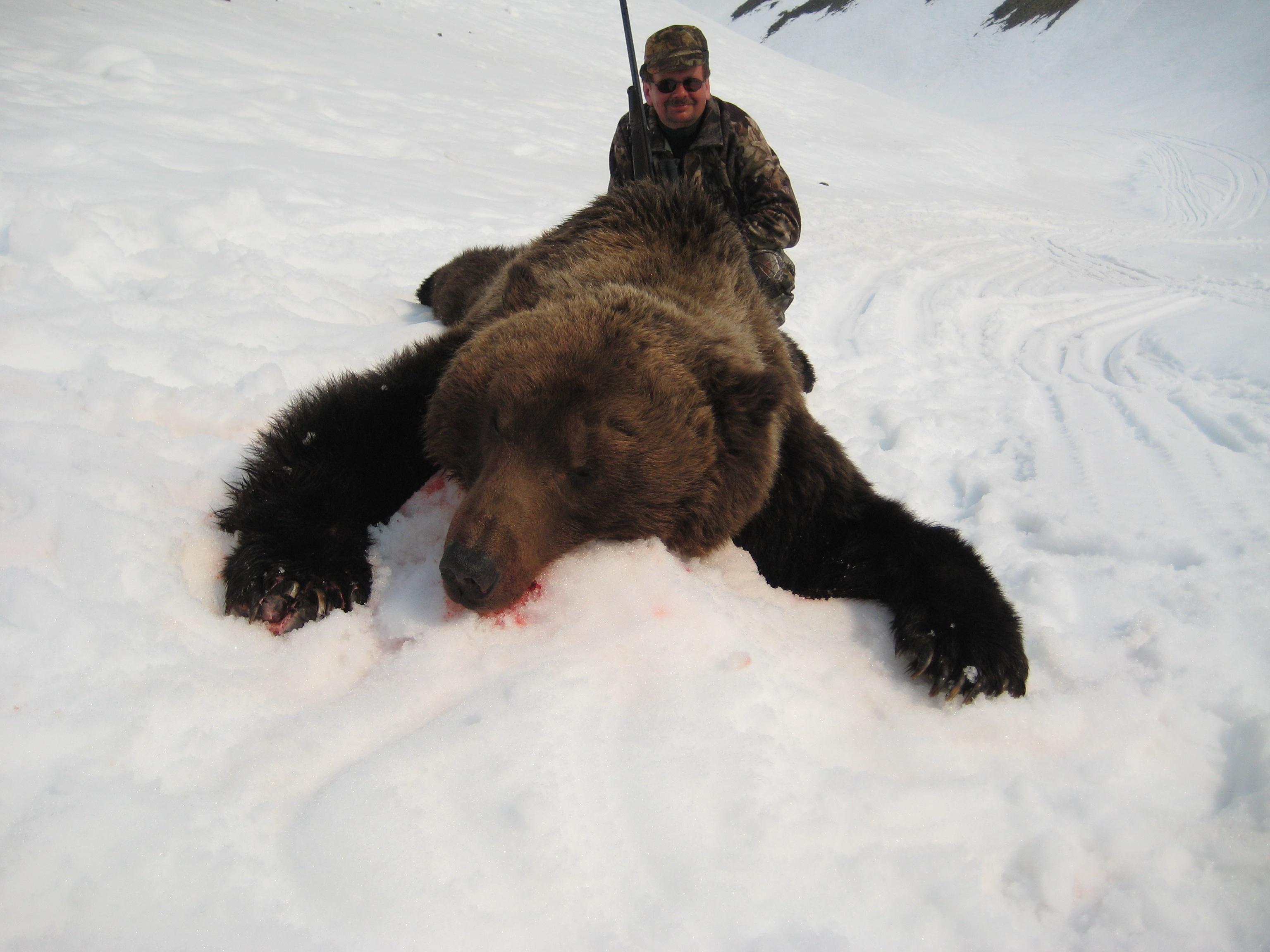 russian bear (1).JPG