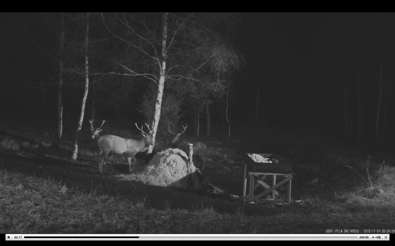 Screen Shot 2016-11-23 at 4.04.26 PM.png