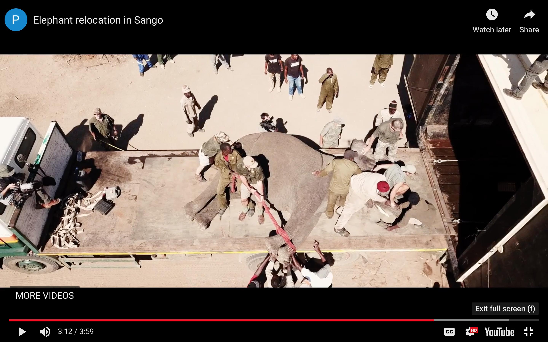 Screen Shot 2019-01-19 at 11.25.37 AM.png