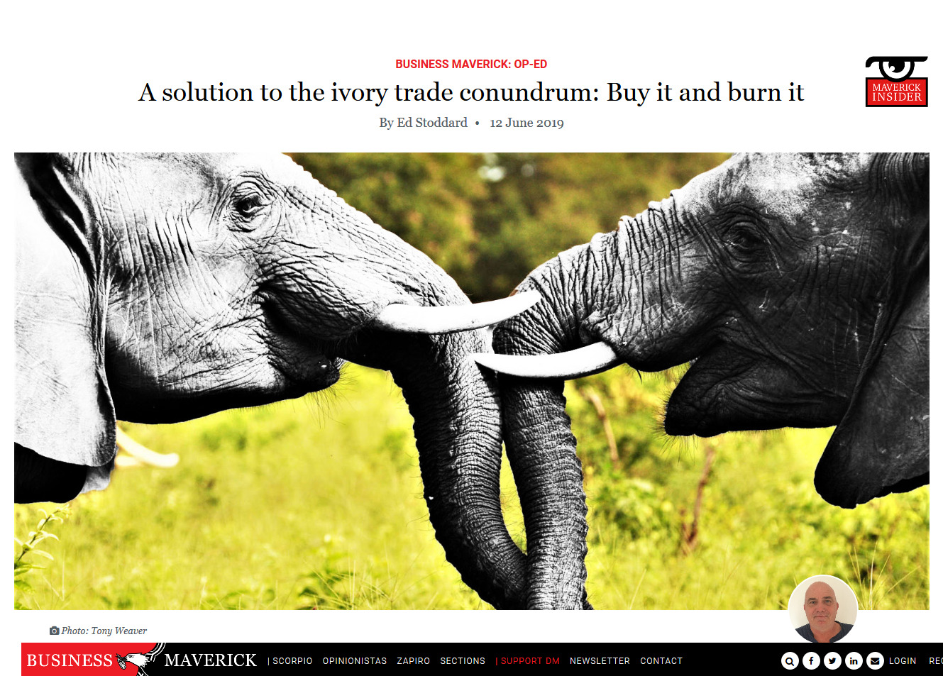 Screenshot_2019-06-21 A solution to the ivory trade conundrum Buy it and burn it.jpg