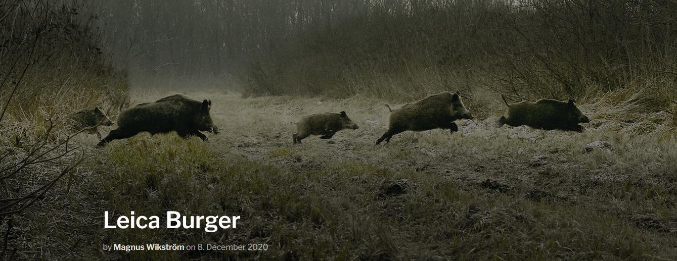 Screenshot_2021-03-08 Leica Burger – Leica Hunting Blog.png