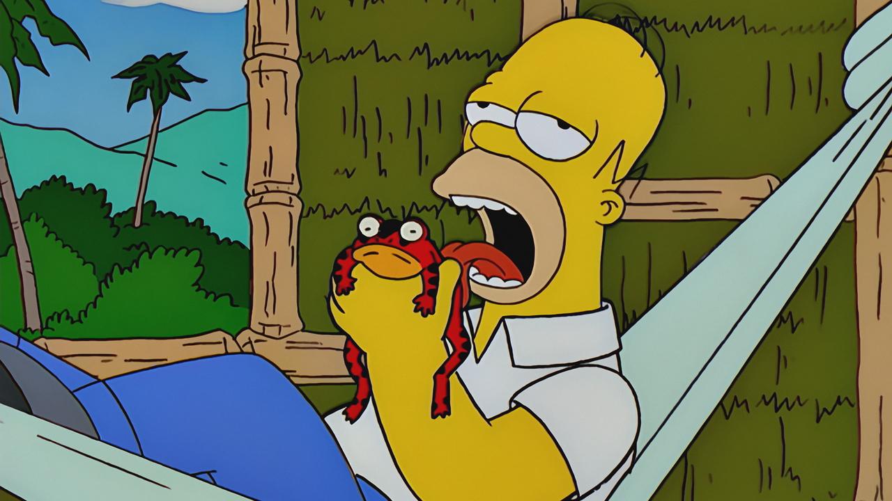 Simpsons_11_15_P3.jpg