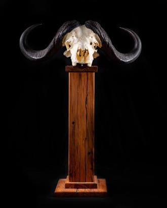 Skull Pedestal.jpg