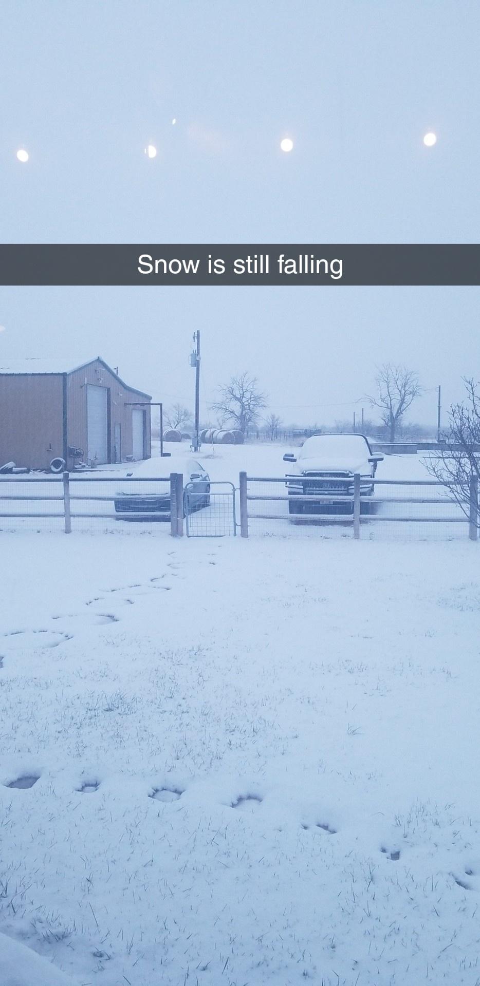 snow falling.jpg