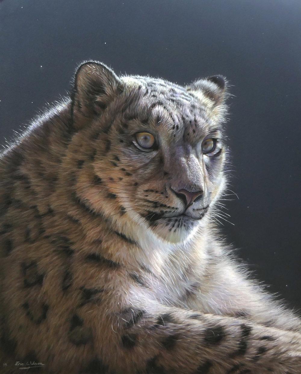 snowleopard2FB.jpg