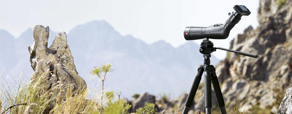 Spektive-Neu-Cinemascope_teaser-1200x470.jpg