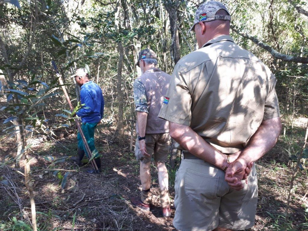 Stalking very slowly in the coastal forest for red duiker..jpg