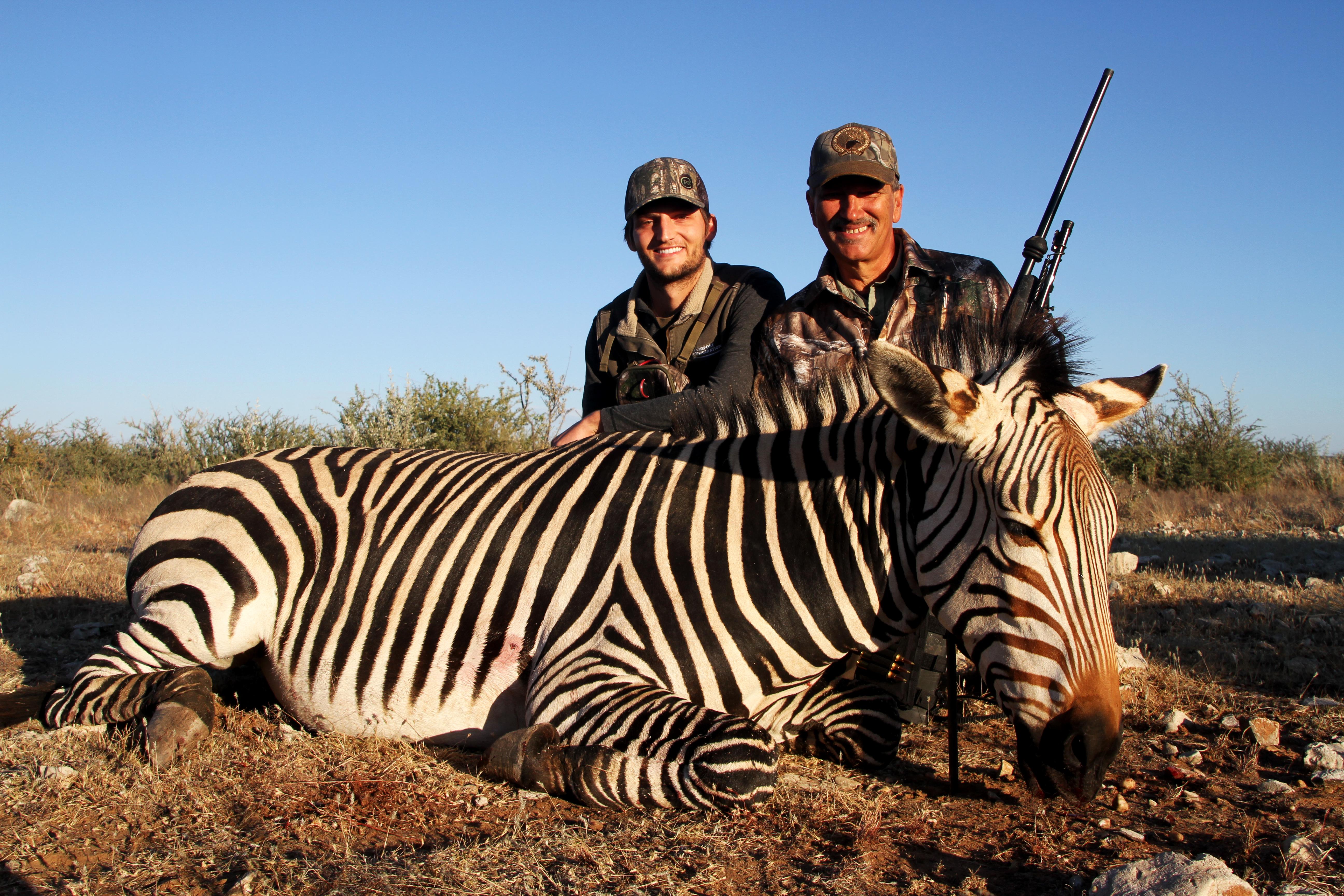 Stan - Hartmann Zebra.jpg