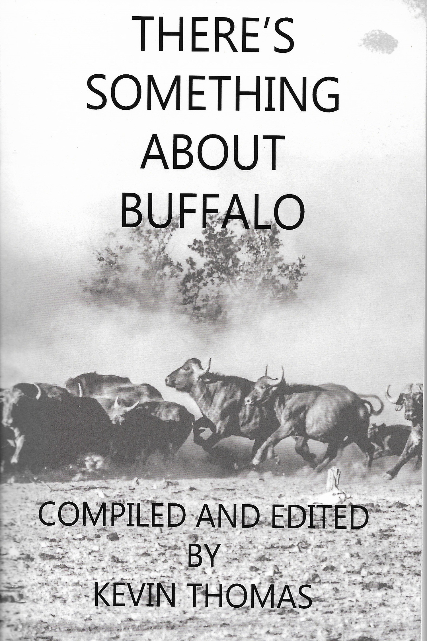 theres-something-about-buffalo-front.jpg