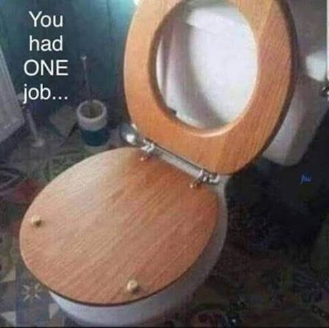 toiletseat.jpeg