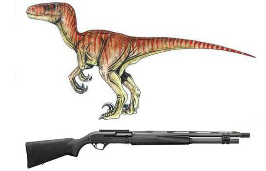 velociraptorversamax.jpg