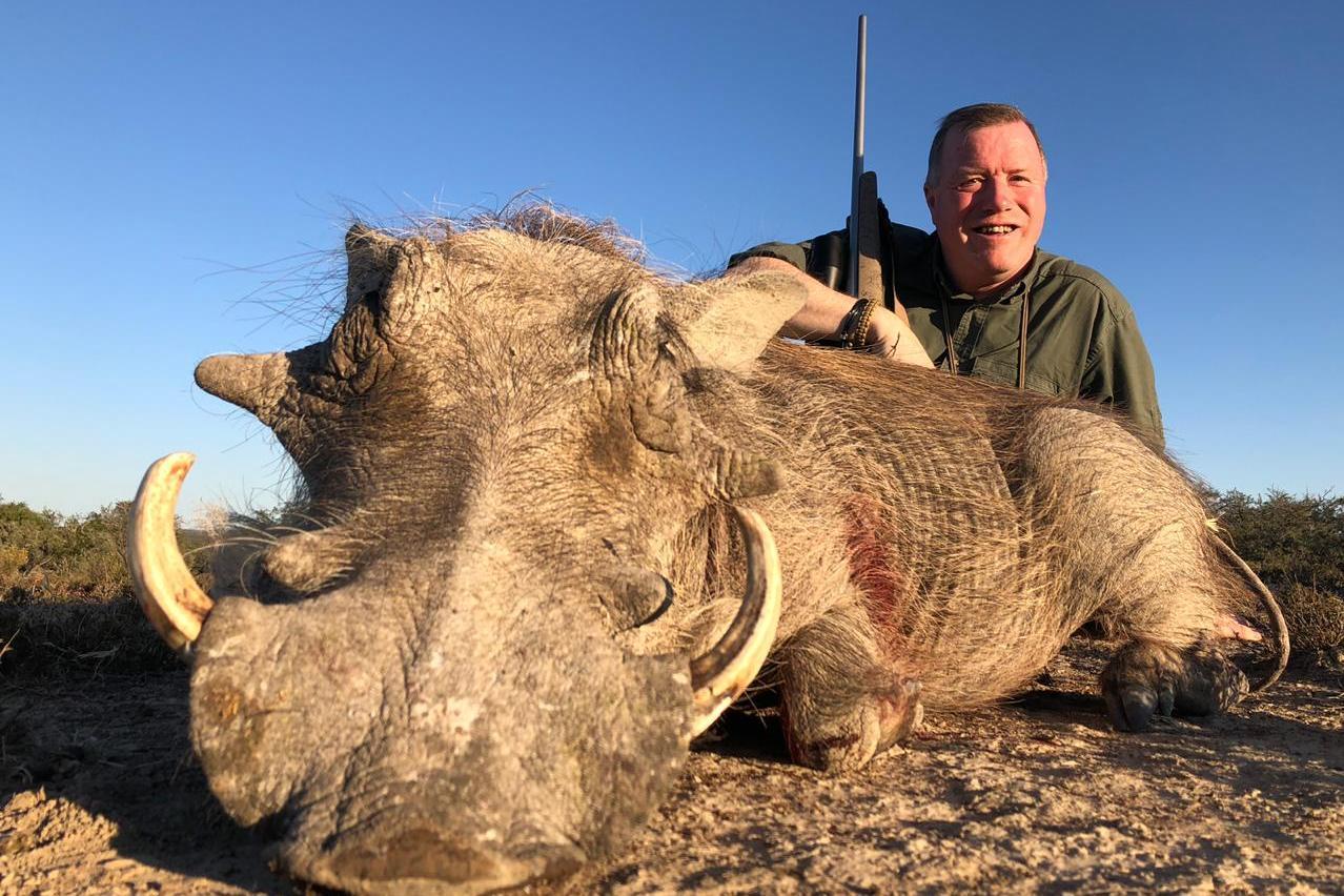 Warthog boar 2.JPG