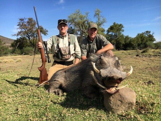 warthog_hunting.jpg