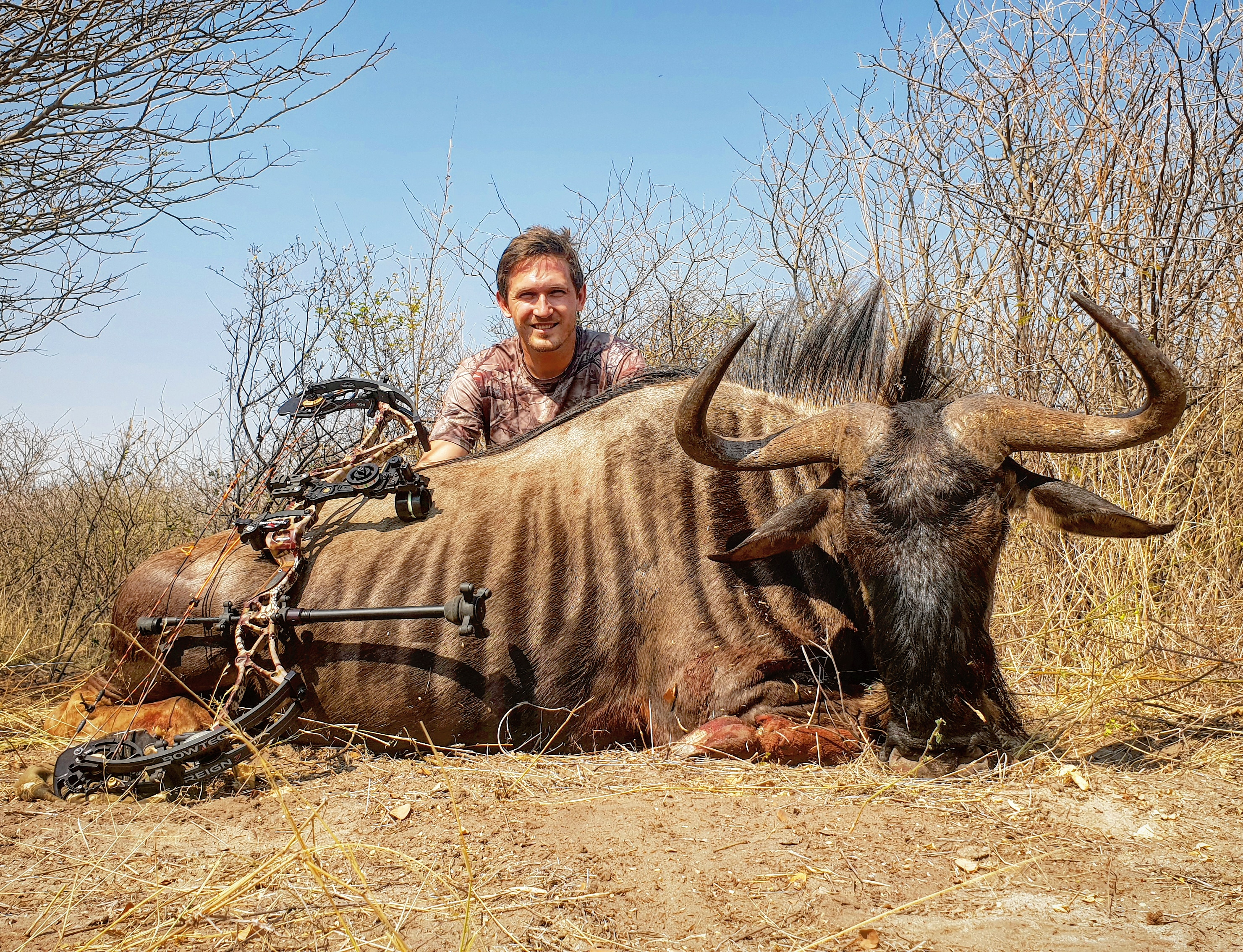 wildebeest 1.jpg
