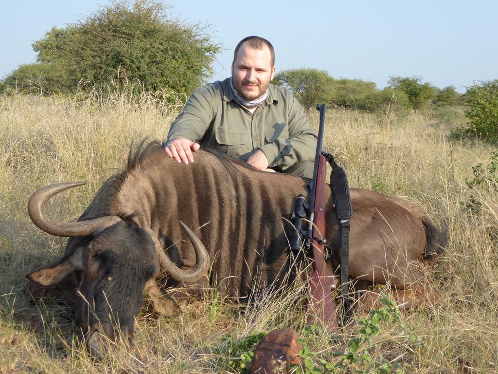 wildebeest%20bull3_zpshrybw5hc.JPG