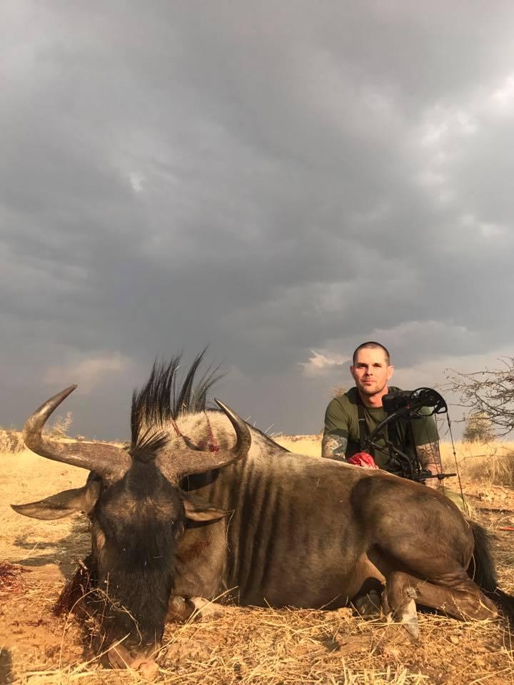 wildebeestpose2.jpg