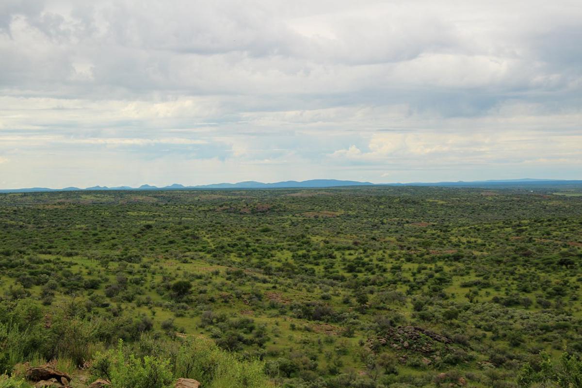 zana-bote-safaris-13.jpg