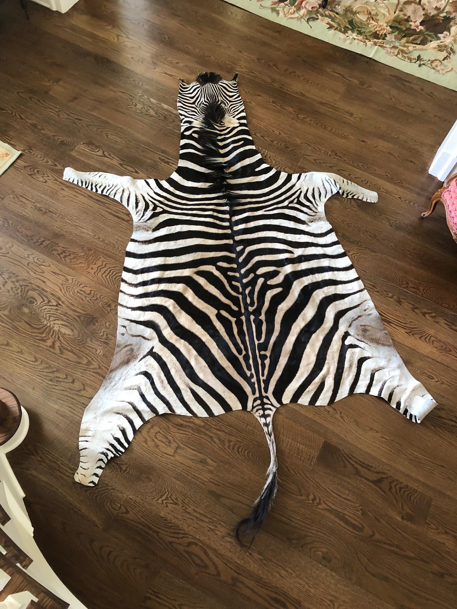 Zebra flatskin July 26 2019.jpg