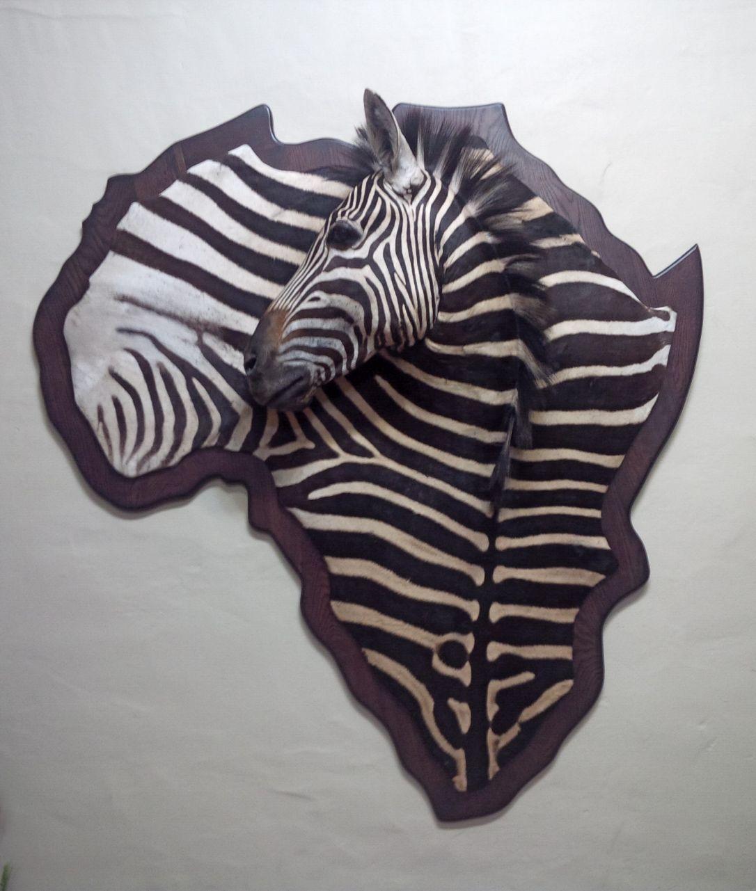 Zebra wall plaque.jpg
