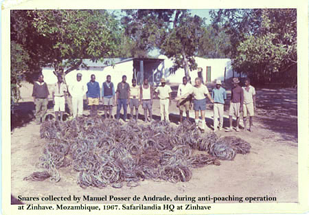 Zinhave-Anti-poaching.jpg