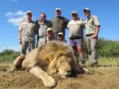 Mike- Lion 2.jpg
