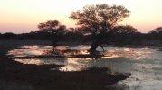 sunrise at Kanana (1024x575).jpg