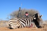 zebra  kanana (1024x680).jpg