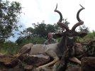 LBG Safaris 2013 (13).jpg