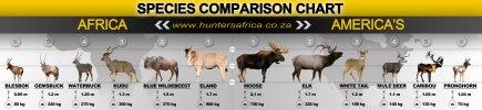 Animal-Africa-Americas.jpg