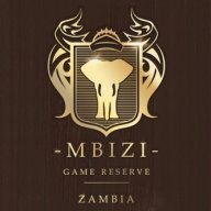 Mbizi Safaris