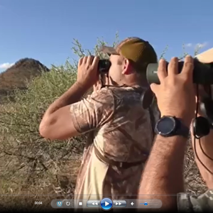 Roan Hunting South Africa with Liam Urry Safaris