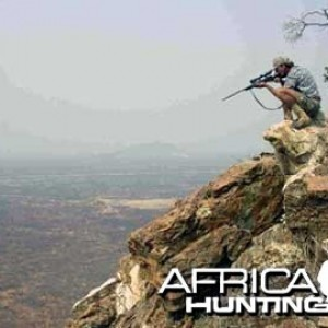 Plains Game Hunting in Namibia