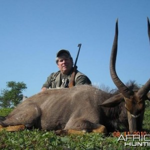 Nyala hunted with Leeukop Safaris in South Africa